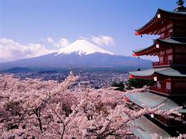 Nhật Bản - Xứ sở Hoa Anh Đào